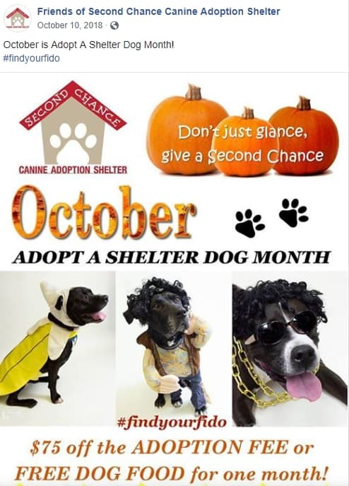 Facebook post for Adopt a Shelter Dog Month